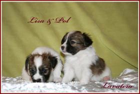 Lisa & Pol