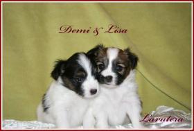 Demi & Lisa