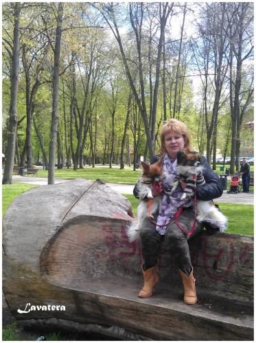 Вильнюс май 2015
